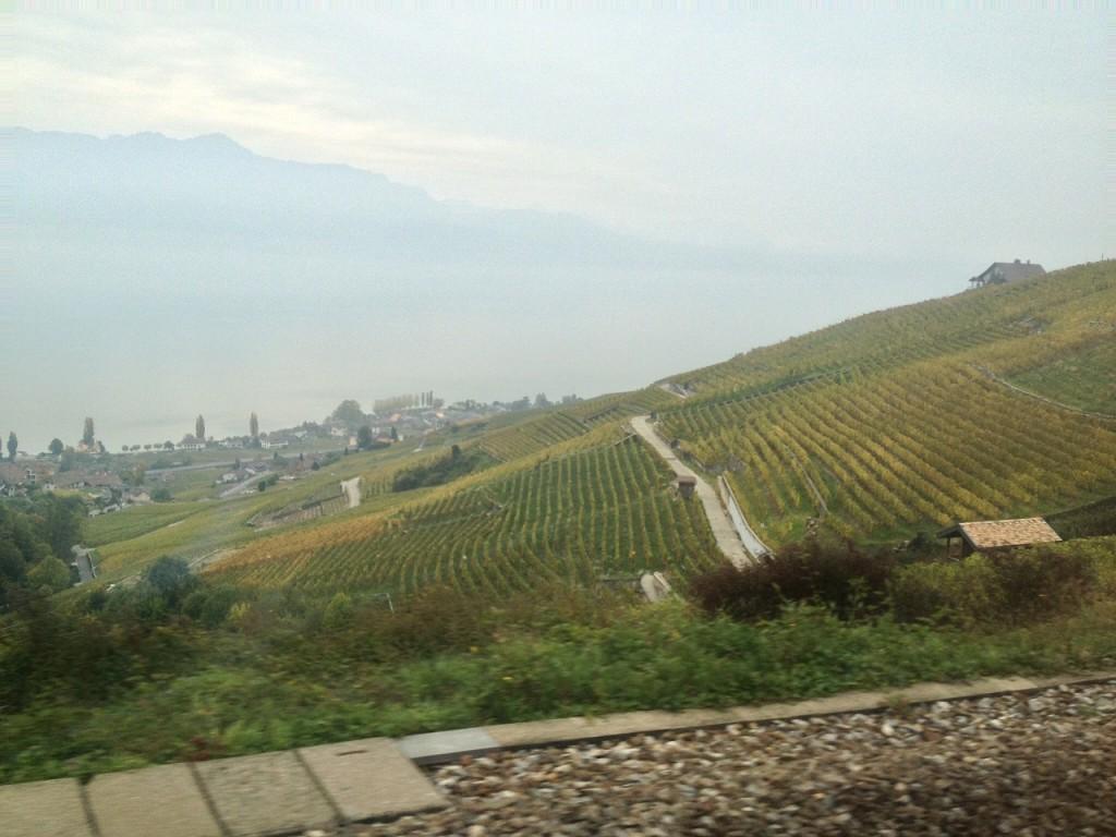 ラヴォー地区の葡萄畑とレマン湖・ラ・ガレン出発