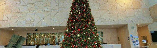 ル・ロゼ校のクリスマスツリー