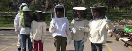 蜂クラブ:ジョン・F・ ケネディー・インターナショナル・スクール