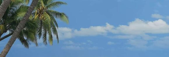 6月の修学旅行:ラ・ガレン
