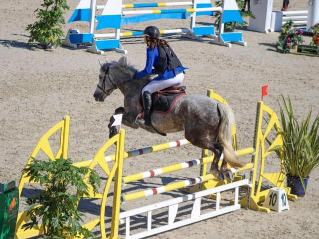 乗馬に情熱を注ぐ姉妹 サーバル・モントルー